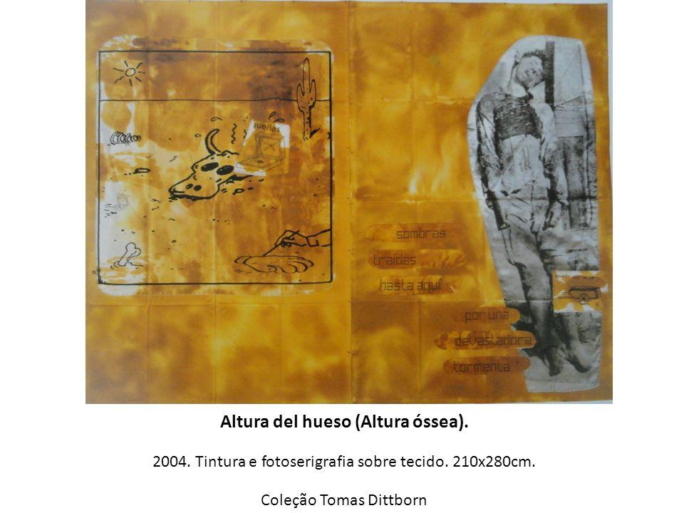 Altura del hueso (Altura óssea). 2004. Tintura e fotoserigrafia sobre tecido. 210x280cm. Coleção Tomas Dittborn