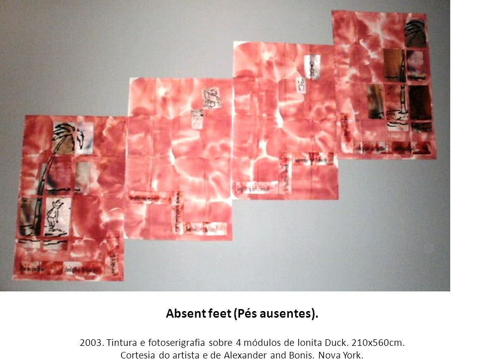 Absent feet (Pés ausentes). 2003. Tintura e fotoserigrafia sobre 4 módulos de lonita Duck. 210x560cm. Cortesia do artista e de Alexander and Bonis. No