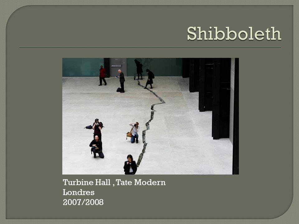 Turbine Hall, Tate Modern Londres 2007/2008