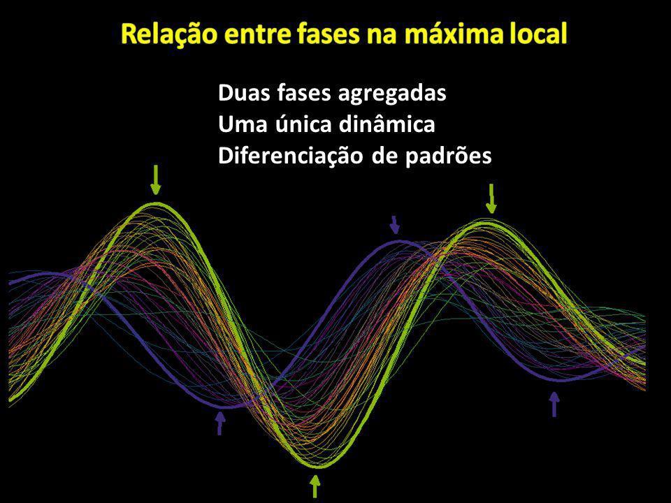 Duas fases agregadas Uma única dinâmica Diferenciação de padrões