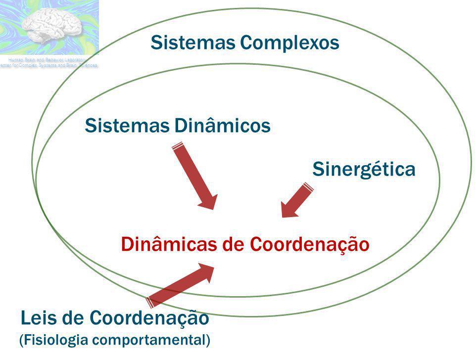 grande n de elementos regras simples sem controle central padrões de comportamento organizados e difíceis de predizer Comportamento coletivo complexo