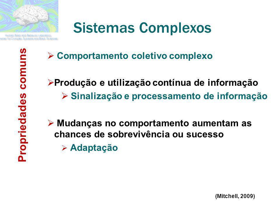 Sistemas Complexos Comportamento coletivo complexo Produção e utilização contínua de informação Sinalização e processamento de informação Mudanças no
