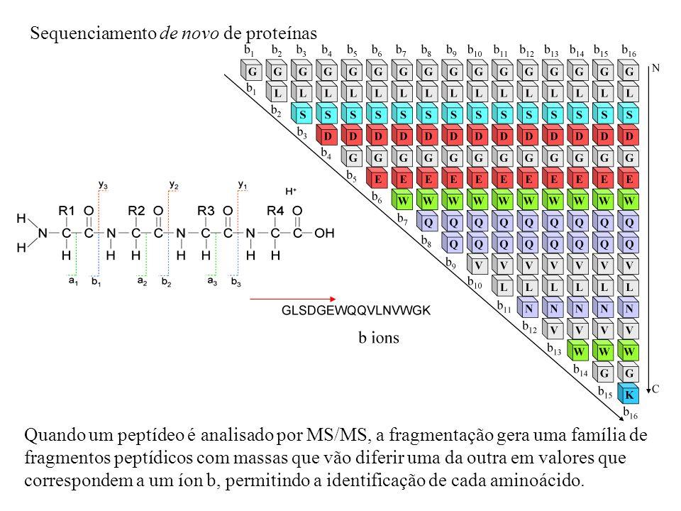 Quando um peptídeo é analisado por MS/MS, a fragmentação gera uma família de fragmentos peptídicos com massas que vão diferir uma da outra em valores