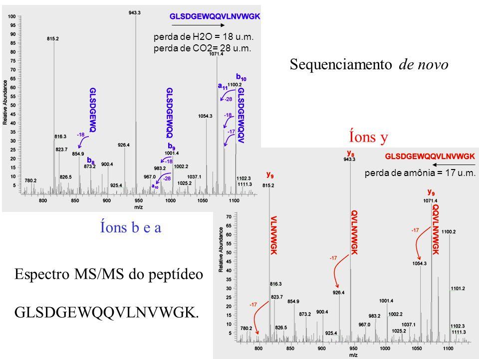 perda de amônia = 17 u.m. perda de H2O = 18 u.m. perda de CO2= 28 u.m. Sequenciamento de novo Espectro MS/MS do peptídeo GLSDGEWQQVLNVWGK. Íons b e a