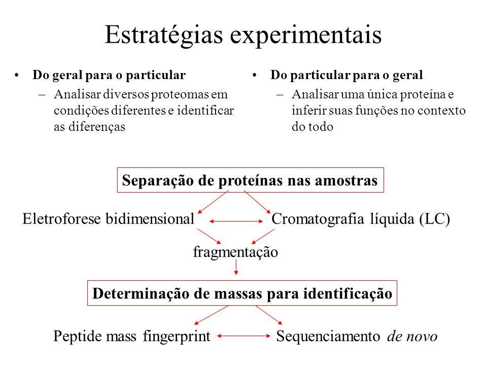 Estratégias experimentais Do geral para o particular –Analisar diversos proteomas em condições diferentes e identificar as diferenças Do particular pa