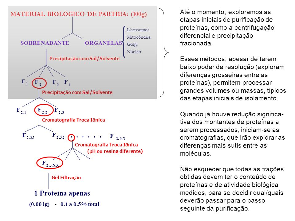 ORGANELAS Lisossomos Mitocôndria Golgi Núcleo SOBRENADANTE F 1 F 2 F 3 F 4 F 2.1 F 2.2 F 2.3 F 2.3.1 F 2.3.2... F 2. 3.N Precipitação comSal/Solvente