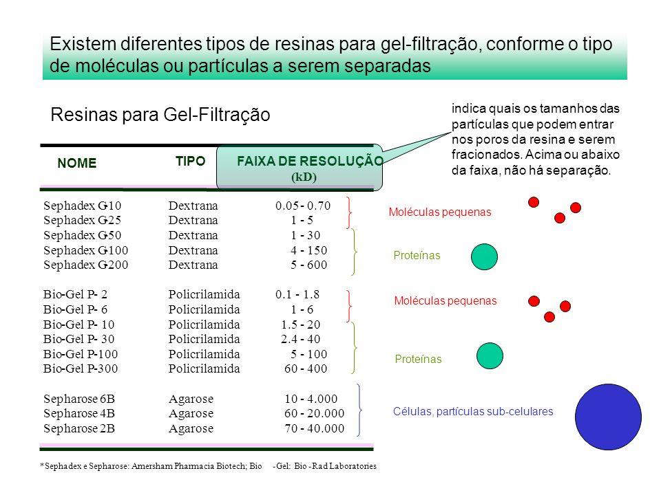 Moléculas pequenas Proteínas Células, partículas sub-celulares Existem diferentes tipos de resinas para gel-filtração, conforme o tipo de moléculas ou