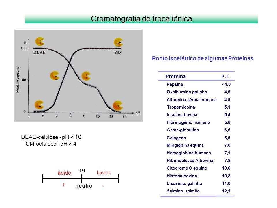 - - - - - - - DEAE-celulose - pH < 10 CM-celulose - pH > 4 Cromatografia de troca iônica Proteína P.I. Pepsina <1,0 Ovalbumina galinha 4,6 Albumina sé