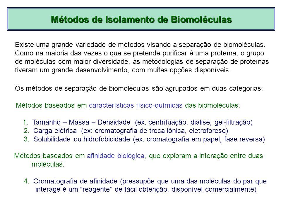 Métodos baseados em características físico-químicas das biomoléculas: 1. Tamanho – Massa – Densidade (ex: centrifuação, diálise, gel-filtração) 2. Car