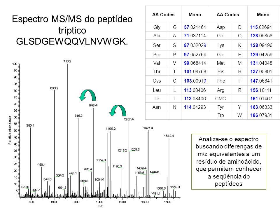 Espectro MS/MS do peptídeo tríptico GLSDGEWQQVLNVWGK. AA CodesMono.AA Codes Mono. GlyG57.021464AspD115.02694 AlaA71.037114GlnQ128.05858 SerS87.032029L