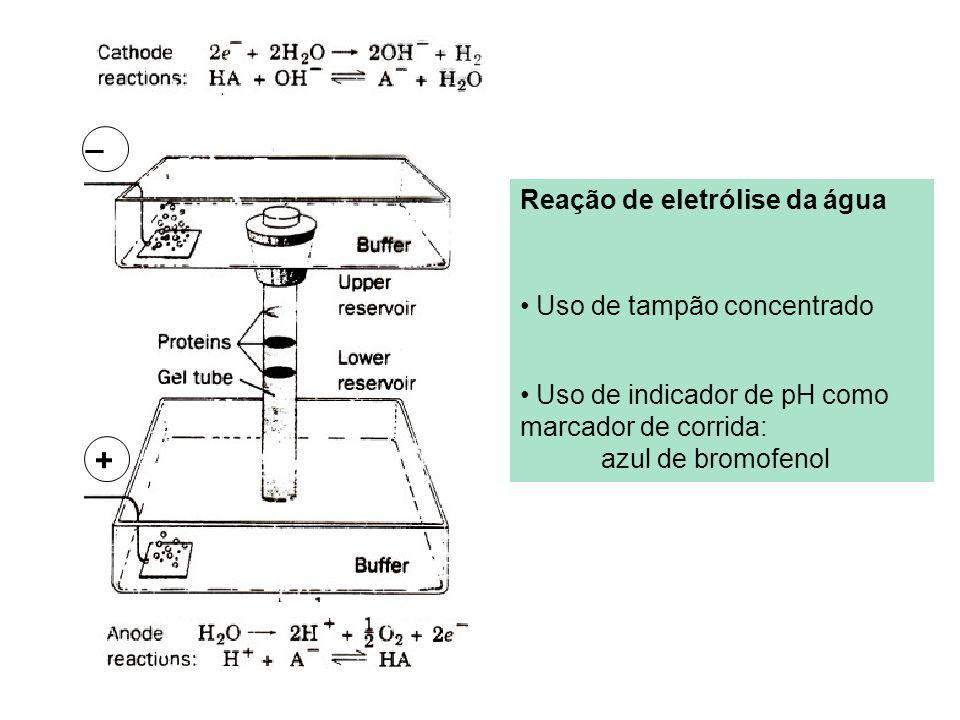 + _ Reação de eletrólise da água Uso de tampão concentrado Uso de indicador de pH como marcador de corrida: azul de bromofenol