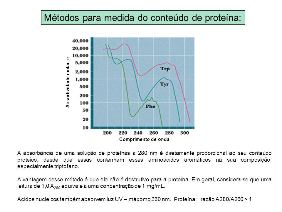 Métodos para medida do conteúdo de proteína: A absorbância de uma solução de proteínas a 280 nm é diretamente proporcional ao seu conteúdo proteico, d