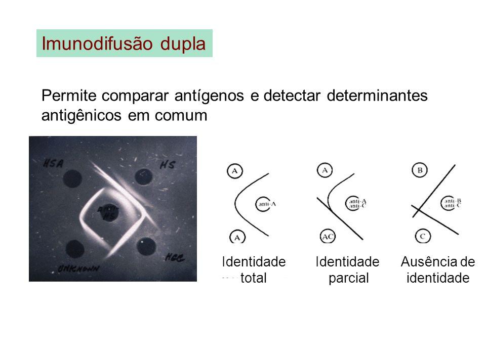 Imunodifusão dupla Permite comparar antígenos e detectar determinantes antigênicos em comum Identidade total Identidade parcial Ausência de identidade