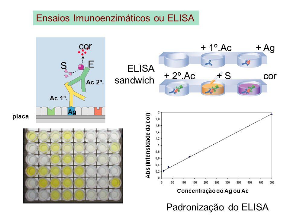Ensaios Imunoenzimáticos ou ELISA + 1º.Ac + Ag placa Ag Ac 1º. Ac 2º. E S cor ELISA sandwich + 2º.Ac + S cor Padronização do ELISA Concentração do Ag
