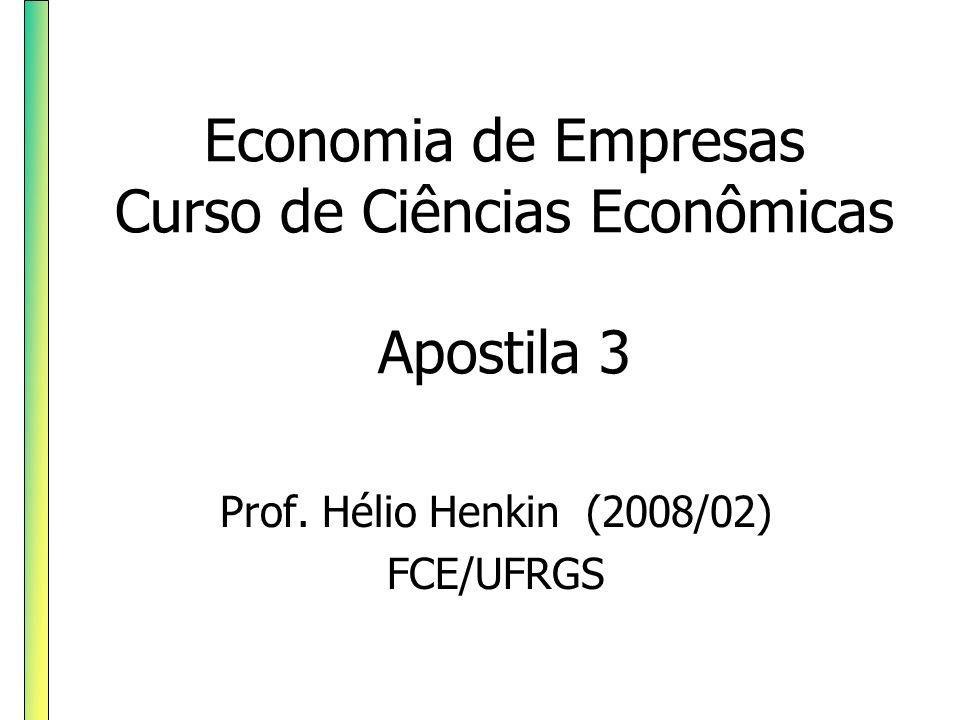 Economia de Empresas Curso de Ciências Econômicas Apostila 3 Prof. Hélio Henkin (2008/02) FCE/UFRGS