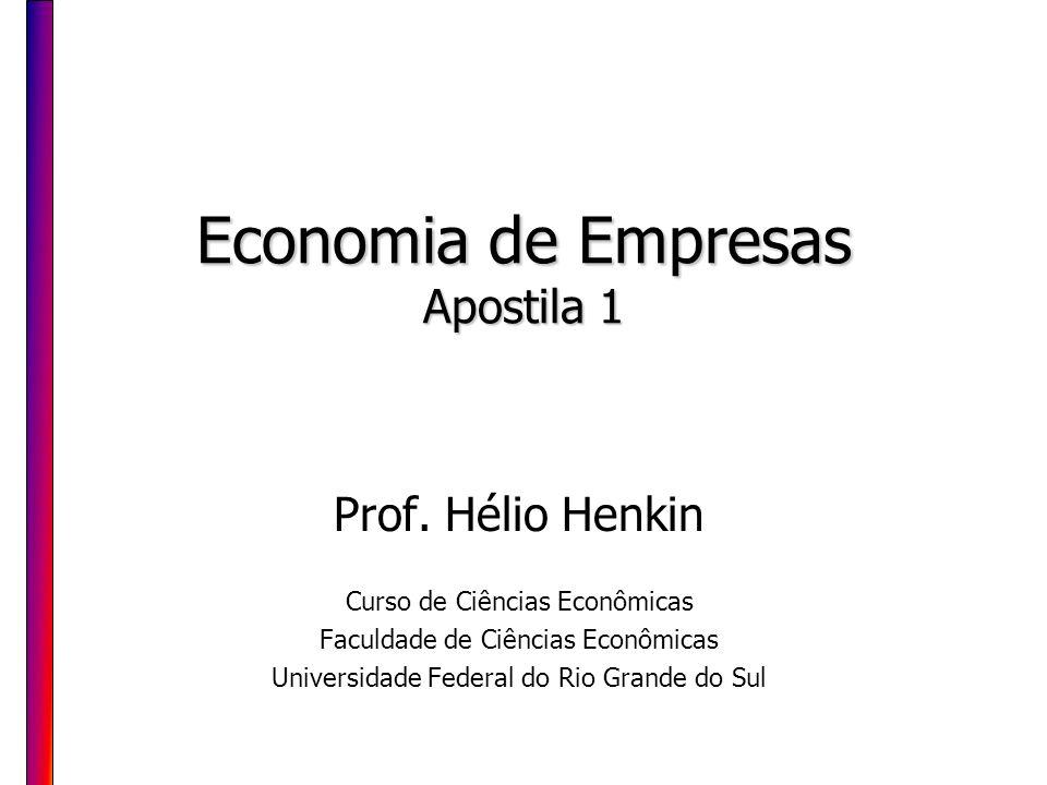 Economia de Empresas Apostila 1 Prof. Hélio Henkin Curso de Ciências Econômicas Faculdade de Ciências Econômicas Universidade Federal do Rio Grande do