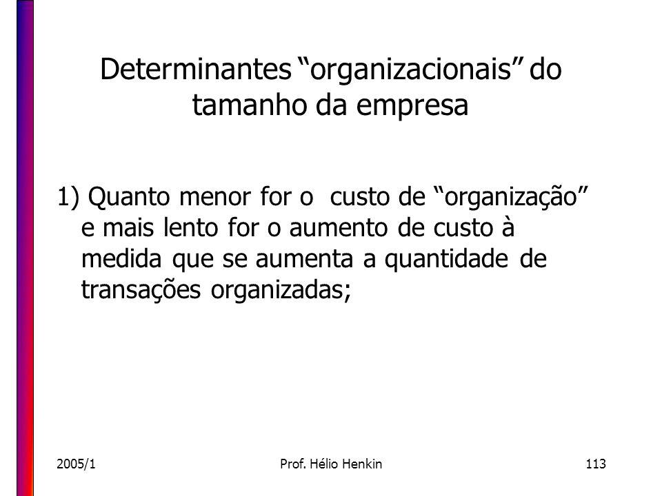 2005/1Prof. Hélio Henkin113 Determinantes organizacionais do tamanho da empresa 1) Quanto menor for o custo de organização e mais lento for o aumento
