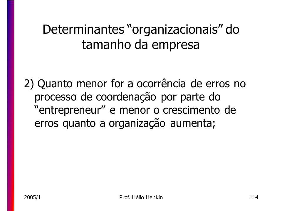 2005/1Prof. Hélio Henkin114 Determinantes organizacionais do tamanho da empresa 2) Quanto menor for a ocorrência de erros no processo de coordenação p