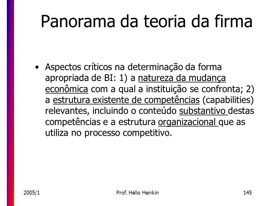 2005/1Prof. Hélio Henkin145 Panorama da teoria da firma Aspectos críticos na determinação da forma apropriada de BI: 1) a natureza da mudança econômic