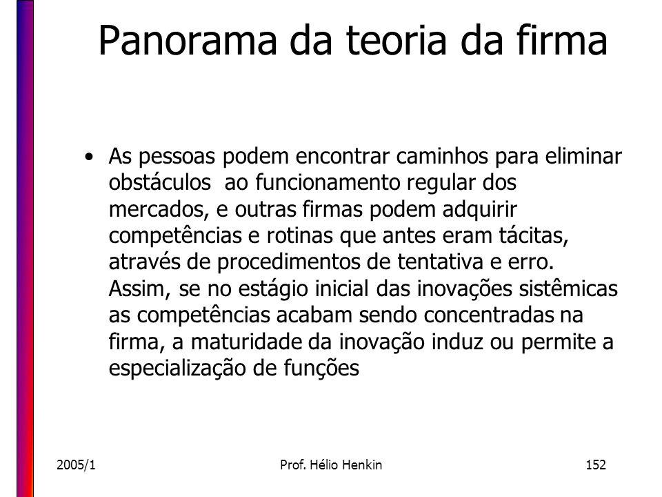 2005/1Prof. Hélio Henkin152 Panorama da teoria da firma As pessoas podem encontrar caminhos para eliminar obstáculos ao funcionamento regular dos merc