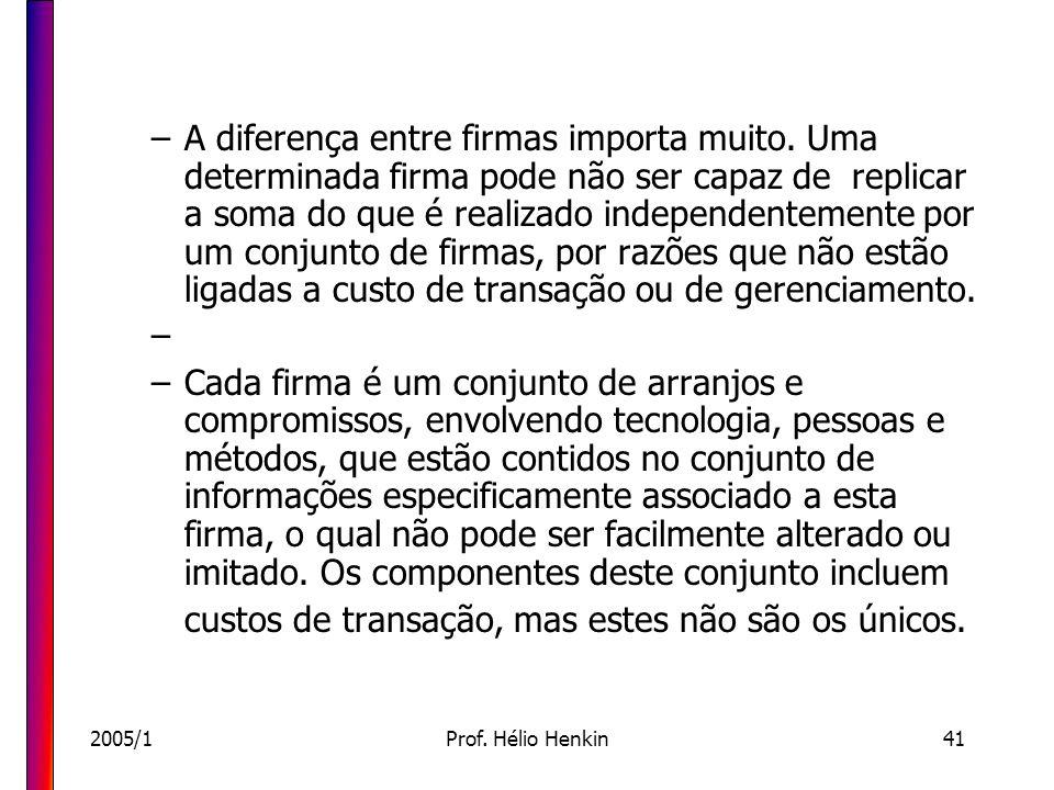 2005/1Prof. Hélio Henkin41 –A diferença entre firmas importa muito. Uma determinada firma pode não ser capaz de replicar a soma do que é realizado ind