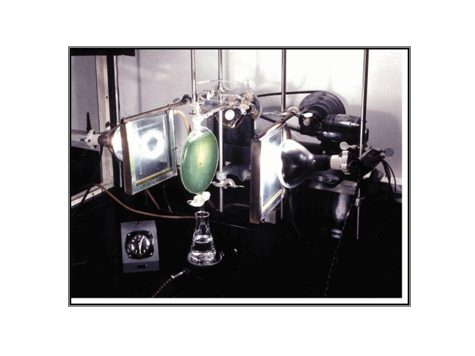 Em 1965 Kortshack: produção de compostos de 4 C em cana 1966 M.D.