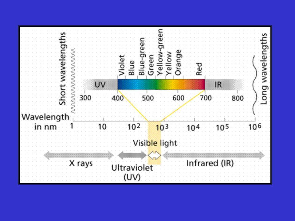 Quanta (fóton) = pacote de radiação eletromagnética (luz) Enegia de 1 quantum = E= h h= const.