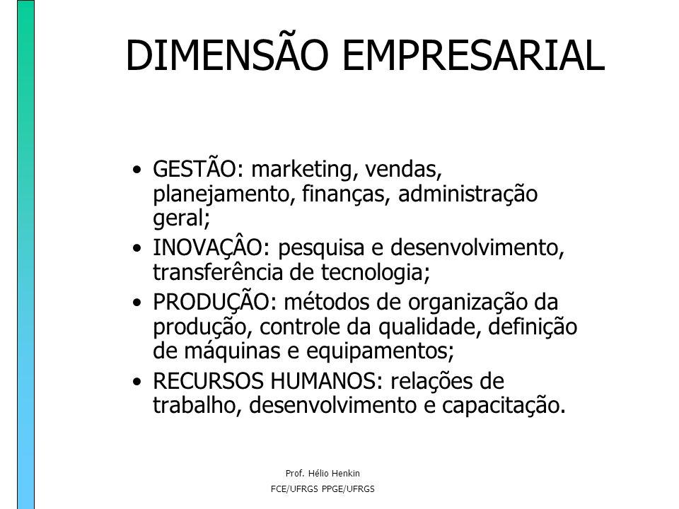 Prof. Hélio Henkin FCE/UFRGS PPGE/UFRGS DIMENSÃO EMPRESARIAL Fatores Sobre Os Quais As Empresas Têm Capacidade De Intervenção Direta