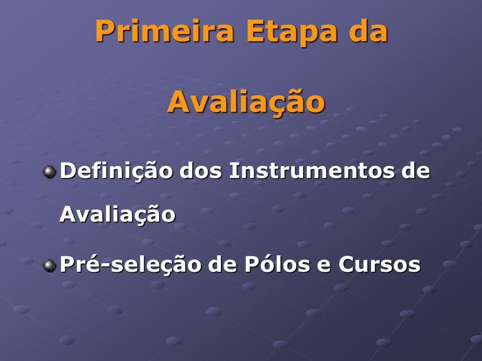 Primeira Etapa da Avaliação Definição dos Instrumentos de Avaliação Pré-seleção de Pólos e Cursos