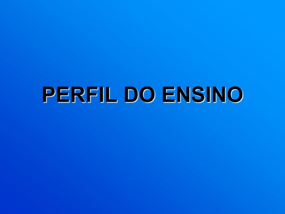 PERFIL DO ENSINO