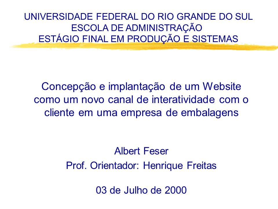Concepção e implantação de um Website como um novo canal de interatividade com o cliente em uma empresa de embalagens Albert Feser Prof.