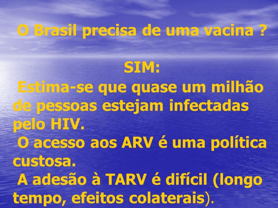 O Brasil precisa de uma vacina ? SIM: Estima-se que quase um milhão de pessoas estejam infectadas pelo HIV. O acesso aos ARV é uma política custosa. A