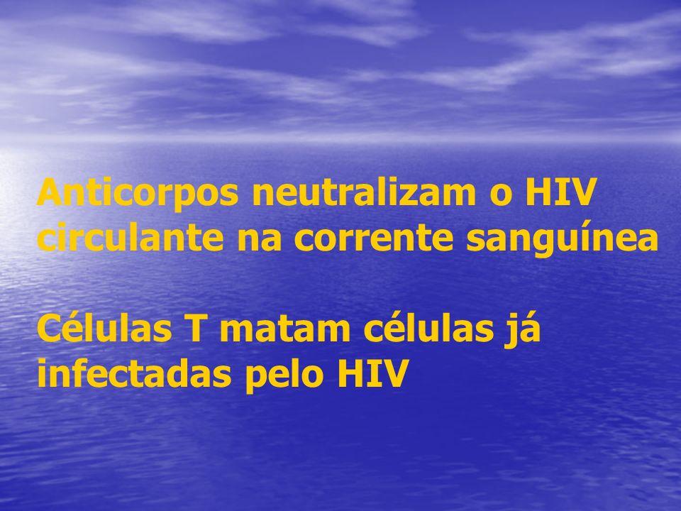 Anticorpos neutralizam o HIV circulante na corrente sanguínea Células T matam células já infectadas pelo HIV