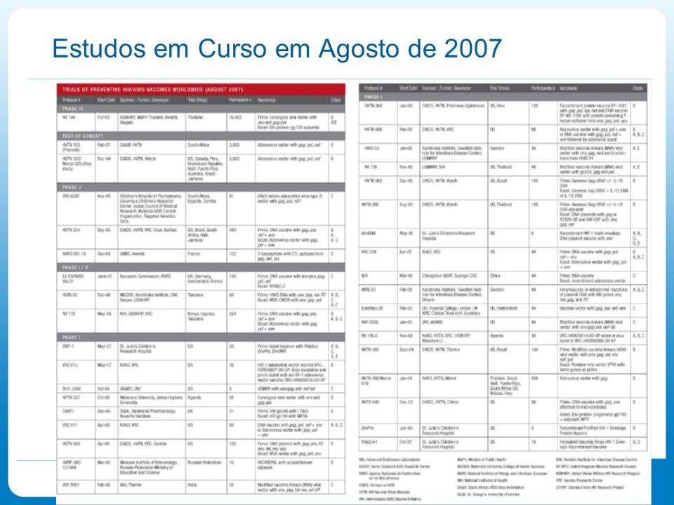 Estudos em Curso em Agosto de 2007