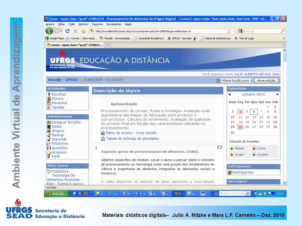 Materiais didáticos digitais– Julio A. Nitzke e Mara L.F. Carneiro – Dez. 2010 Ambiente Virtual de Aprendizagem