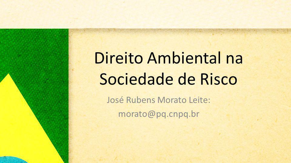 Direito Ambiental na Sociedade de Risco José Rubens Morato Leite: morato@pq.cnpq.br
