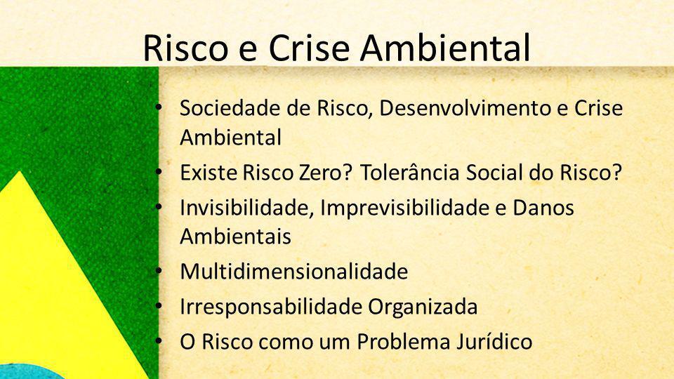 Risco e Crise Ambiental Sociedade de Risco, Desenvolvimento e Crise Ambiental Existe Risco Zero? Tolerância Social do Risco? Invisibilidade, Imprevisi