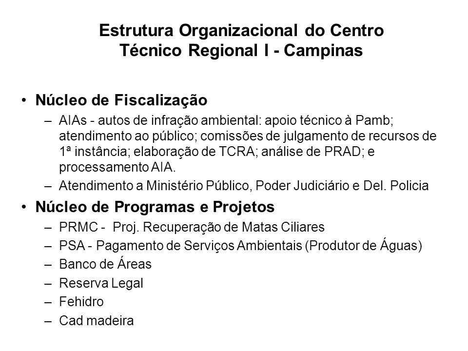Estrutura Organizacional do Centro Técnico Regional I - Campinas Núcleo de Fiscalização –AIAs - autos de infração ambiental: apoio técnico à Pamb; ate
