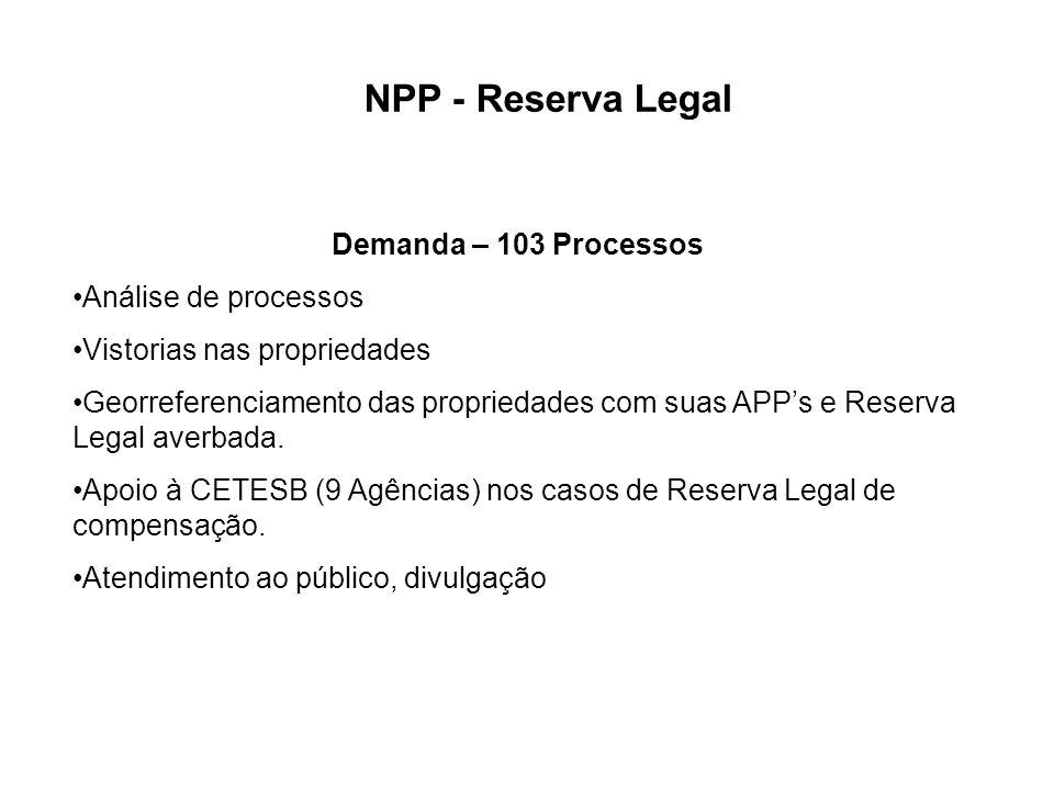 Demanda – 103 Processos Análise de processos Vistorias nas propriedades Georreferenciamento das propriedades com suas APPs e Reserva Legal averbada. A