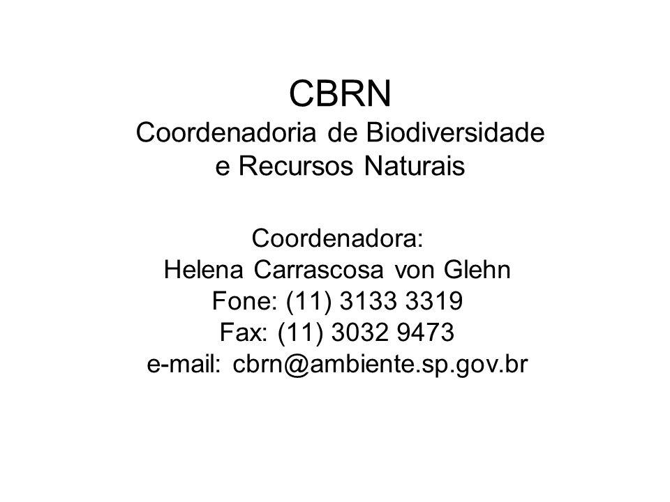 CBRN Coordenadoria de Biodiversidade e Recursos Naturais Coordenadora: Helena Carrascosa von Glehn Fone: (11) 3133 3319 Fax: (11) 3032 9473 e-mail: cb