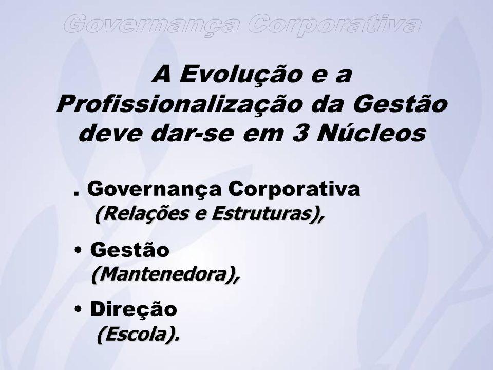 A Evolução e a Profissionalização da Gestão deve dar-se em 3 Núcleos.