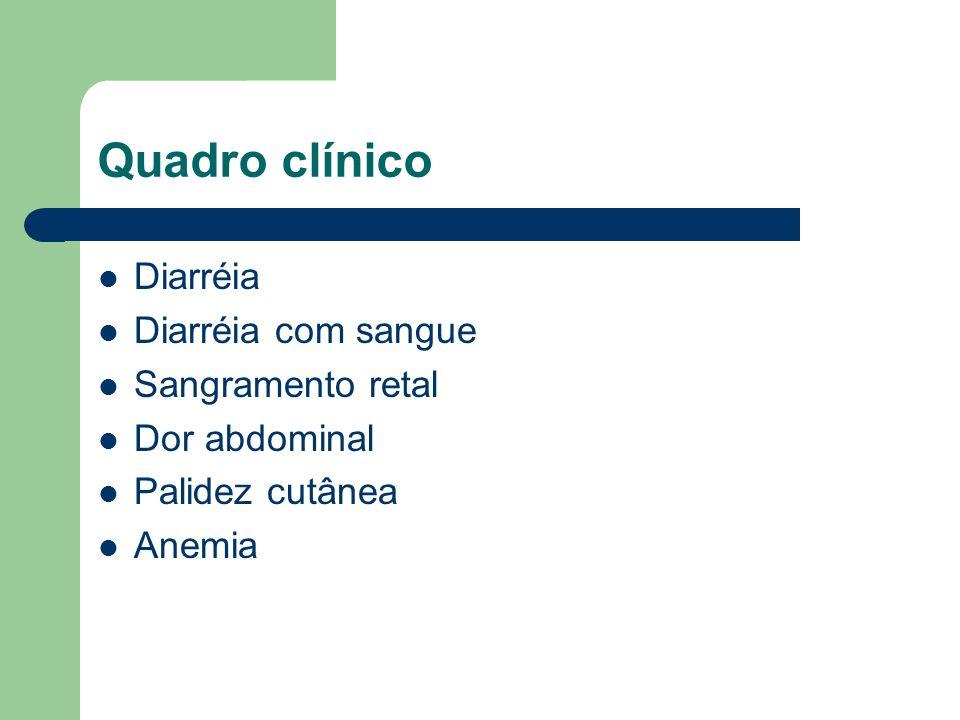 Quadro clínico Diarréia Diarréia com sangue Sangramento retal Dor abdominal Palidez cutânea Anemia