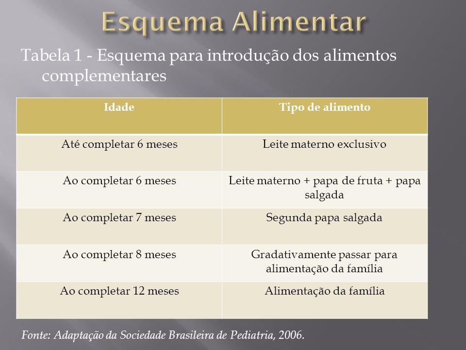 Tabela 1 - Esquema para introdução dos alimentos complementares IdadeTipo de alimento Até completar 6 mesesLeite materno exclusivo Ao completar 6 mese