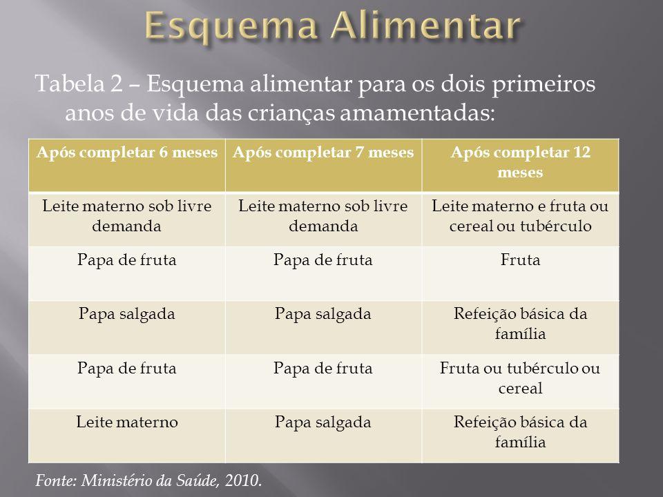 Tabela 2 – Esquema alimentar para os dois primeiros anos de vida das crianças amamentadas: Após completar 6 mesesApós completar 7 mesesApós completar