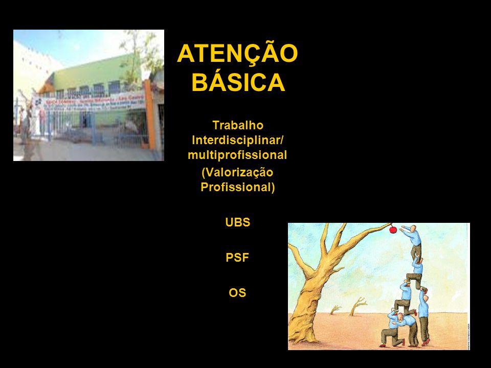 ATENÇÃO BÁSICA Trabalho Interdisciplinar/ multiprofissional (Valorização Profissional) UBS PSF OS