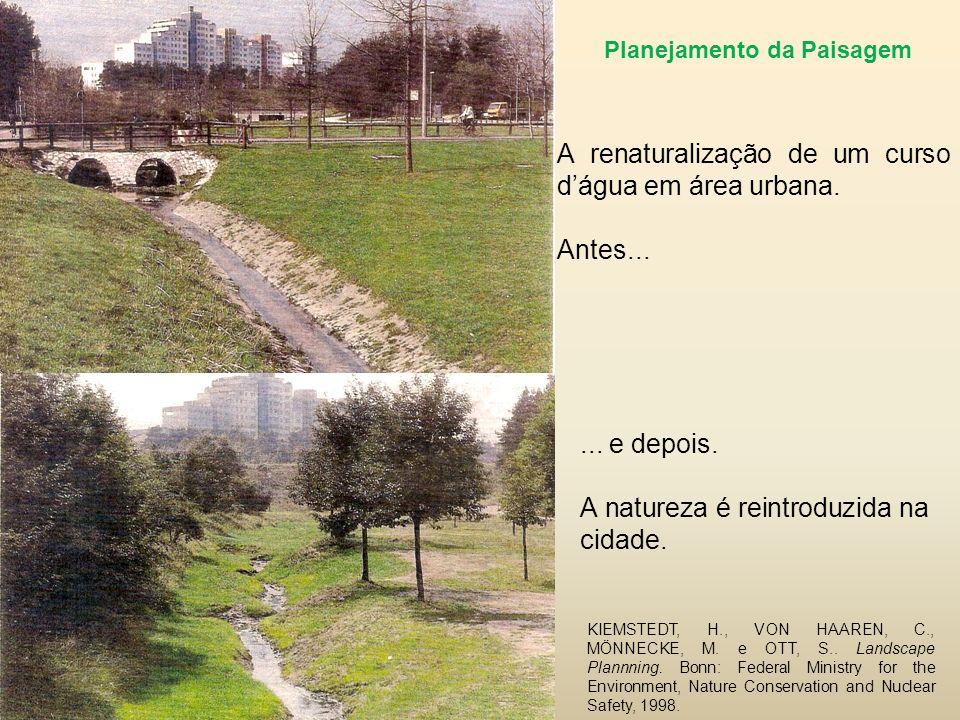 ...e depois. A natureza é reintroduzida na cidade.