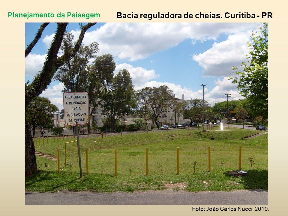 Planejamento da Paisagem Bacia reguladora de cheias. Curitiba - PR Foto: João Carlos Nucci, 2010.