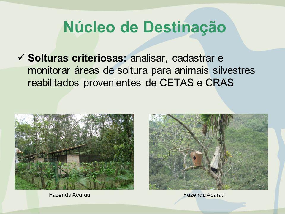 Núcleo de Destinação Solturas criteriosas: analisar, cadastrar e monitorar áreas de soltura para animais silvestres reabilitados provenientes de CETAS