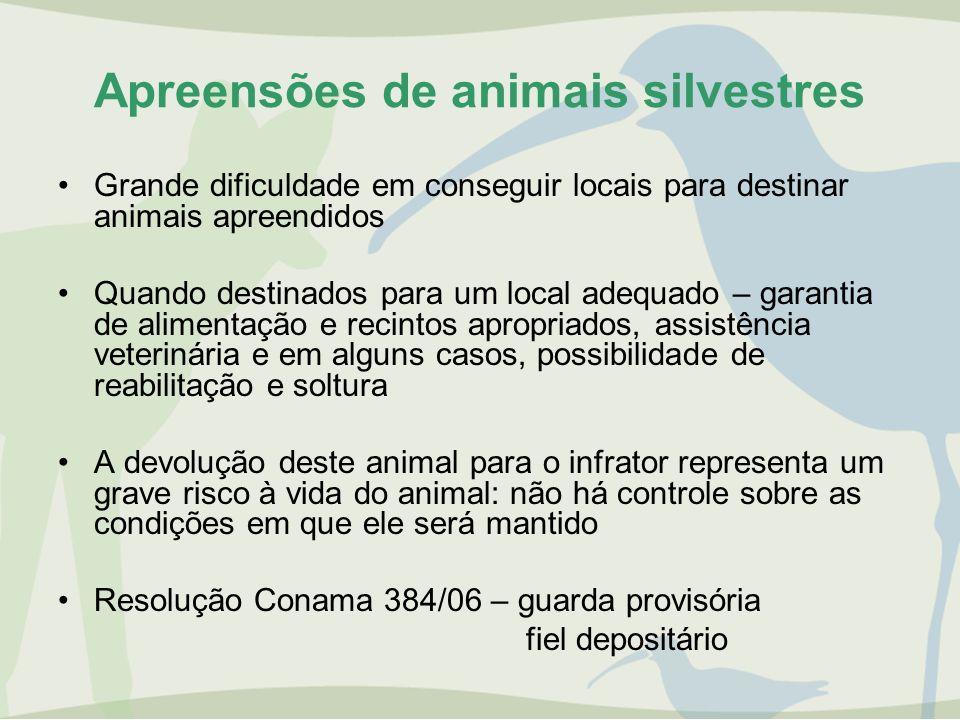 Apreensões de animais silvestres Grande dificuldade em conseguir locais para destinar animais apreendidos Quando destinados para um local adequado – g