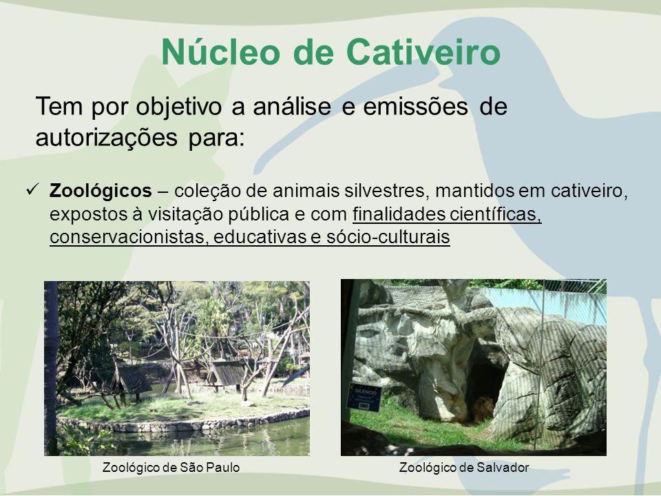Núcleo de Cativeiro Zoológicos – coleção de animais silvestres, mantidos em cativeiro, expostos à visitação pública e com finalidades científicas, con
